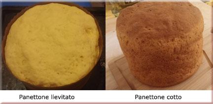panetton4